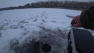 Окунь Клюёт на каждом опускании мормышки. Зимняя рыбалка 2020. Ловля окуня