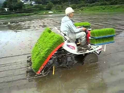 mesin penanam padi otomatis Modern Canggih Di Indonesia