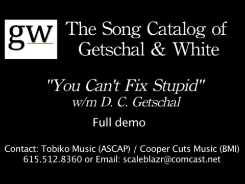 You Can't Fix Stupid lyric video (full demo)