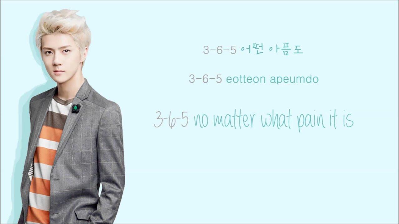 EXO – 3 6 5
