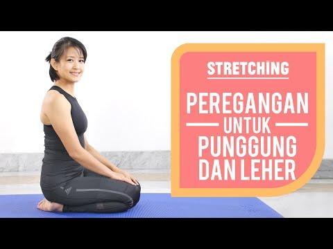 NyeriNyeripunggung bawah (low back pain) adalah rasaNyeriNyeripunggung bawah (low back pain) adalah .