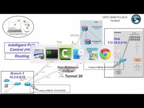 IWAN: Why EIGRP or BGP over the DMVPN Tunnels?
