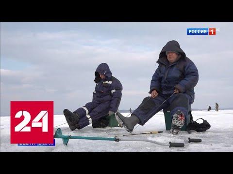 Ловля рыбы по новым правилам: что надо знать рыбакам - Россия 24