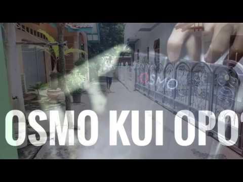 beli kamera DJI OSMO