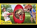 GIANT T-REX EGG! Dinosaur Surprise Toys Opening & Learn Dinosaurs for Children Family Fun Kids Video