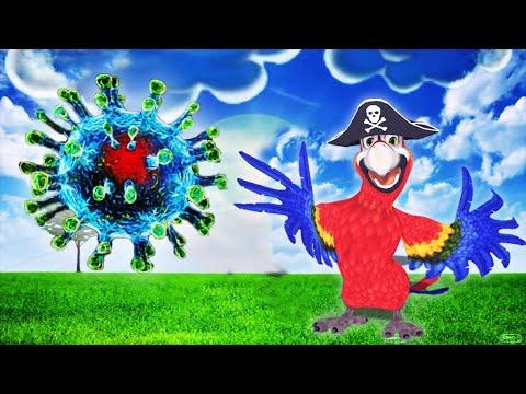 lustige spruche uber den coronavirus humor ist die beste medizin