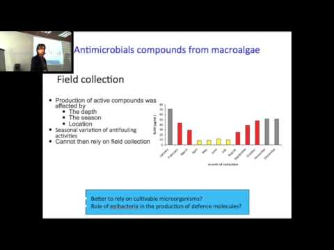 BIOCORIN 11 _ Claire Hellio Antimicrobial compounds isolated from sponges seaweeds microflora