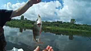 Рыбалка и Ловля Окуня на Спиннинг СУПЕР КЛЁВ ОКУНЯ на Спиннинг (Рыбалка Видео) - MF №70