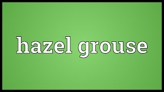 Hazel grouse Meaning
