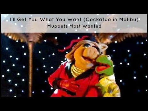 Ill Get You What You Want Lyrics  Muppets Most Wanted