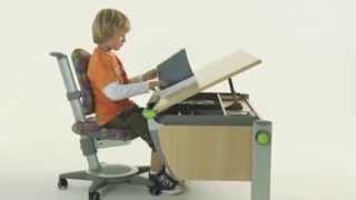 Moll Runner Ergonomic Study Table For Children