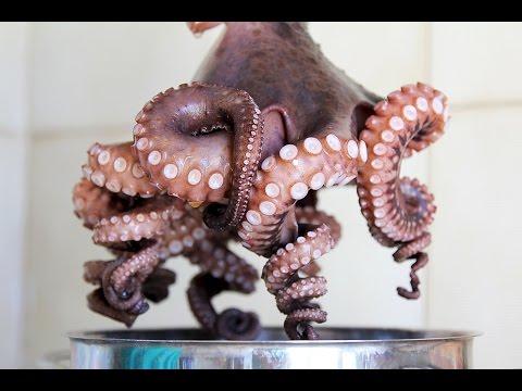 Как долго варить осьминога