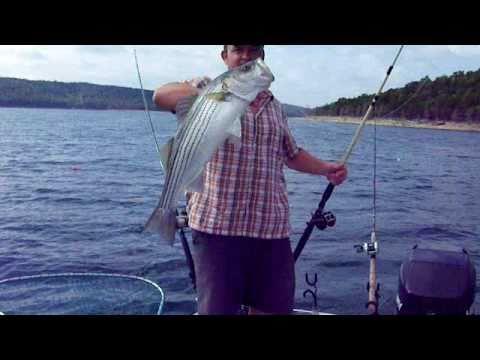 Arkansas striper fishing august beaver lake 8 30 2010 for Beaver lake arkansas fishing report