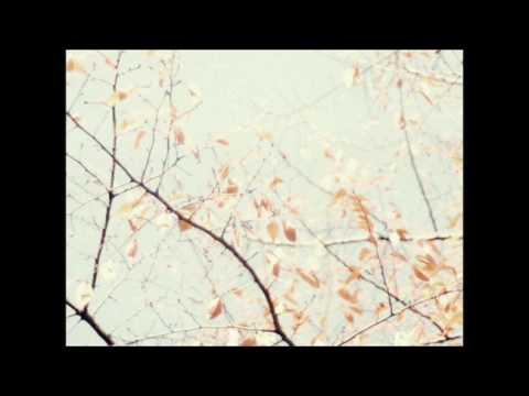 Cinta Salah - Caitlin Halderman (Lyrics Video) OST. Ada Cinta Di SMA