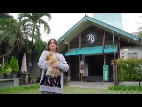 รายการ Petlover by Jerhigh 051258 : Hound Cute Pet Grooming