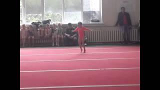 Спортивная гимнастика 1-й юношеский разряд...