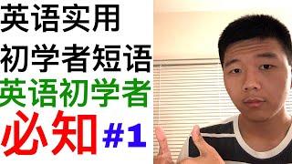 #01:英语初学者实用短语-每天10句英语短语 Beginner English Lesson#1: Daily Useful Phrases