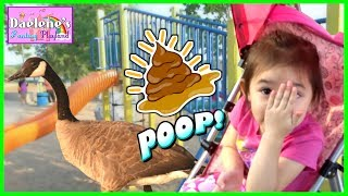 Goose POOPS in Kids Outdoor Playground! Family Fun Outdoor Activities at the Park