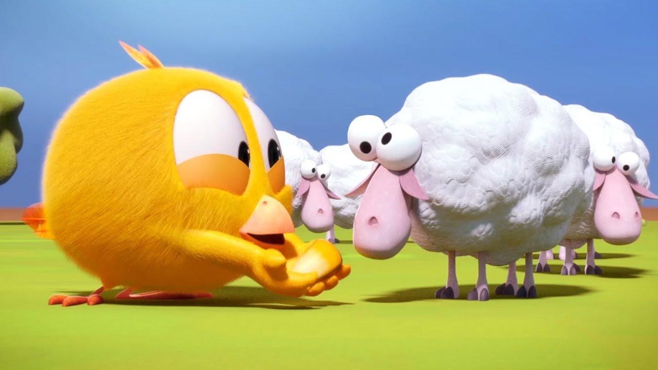 Где Чики? 💥 Chicky НОВАЯ СЕРИЯ!   Сумасшедшие овцы   Сборник мультфильмов на русском языке