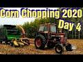 Chopping Corn 2020: Day 4