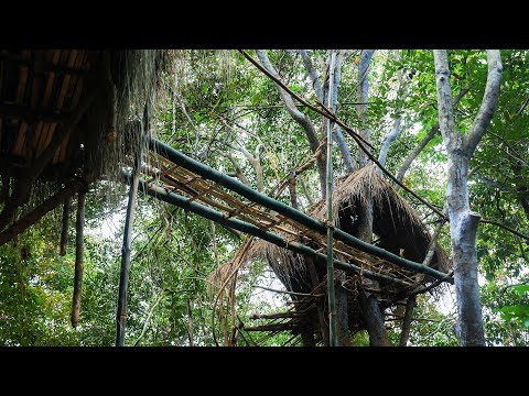 Primitive Technology, Make a bridge between two tree house
