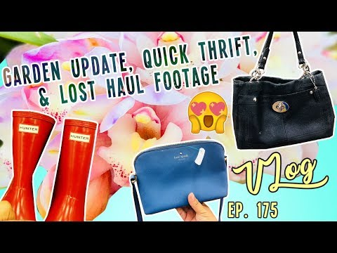 GARDEN UPDATE, QUICK THRIFT, & LOST HAUL FOOTAGE |  TRIP VLOG EP. 175