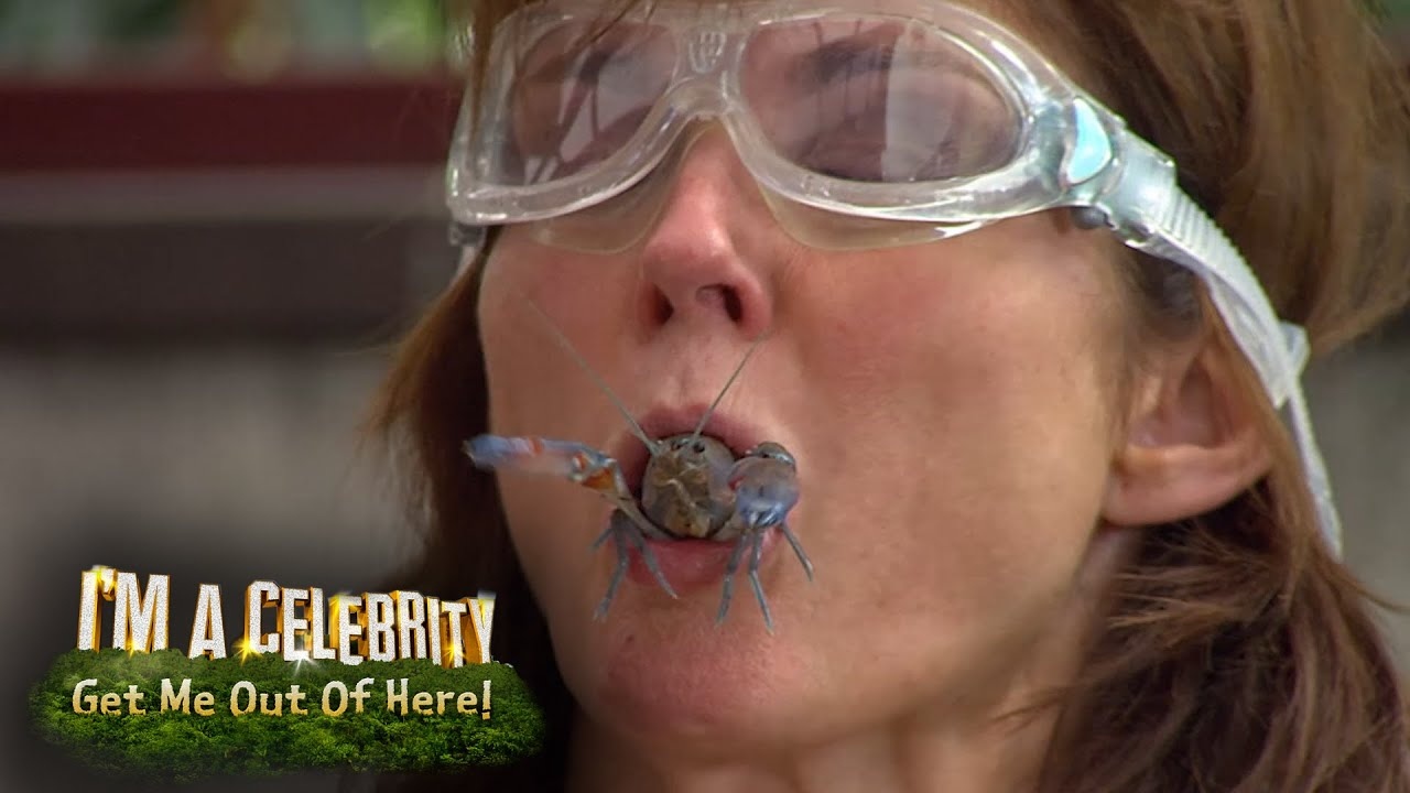 'I'm a Celebrity' Annabel Giles: 'Amy Willerton is playing ...