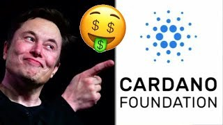 Cardano Millionaires Will Be Unique ADA #Cardano Wealth Growth Starts With Shelly