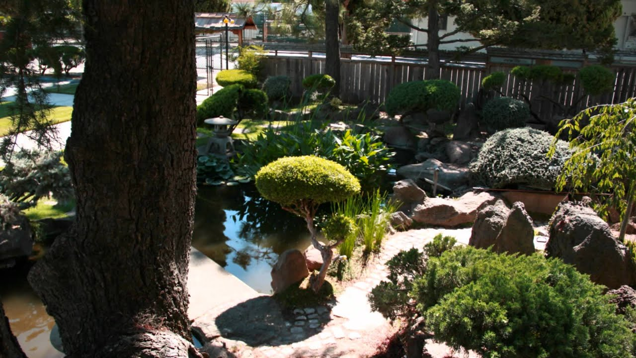 Japanese community garden koi pond youtube for Koi pond japan