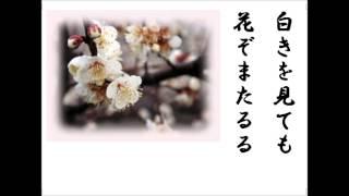 岳風会吟詠教本 和歌下巻28頁。櫻花三百首の内の一首。大寒の今頃詠んだ...