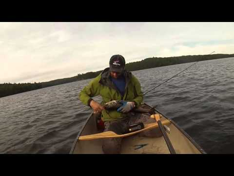 2015 Algonquin Park Fishing Trip Lake Trout