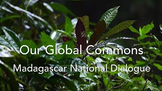 GEF Madagascar National Dialogue focuses on island's environment funding priorities