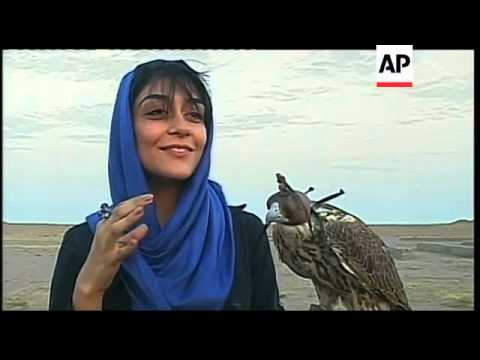 Iran's first falcon flying club revives ancient tradition