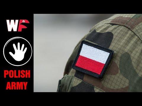 POLISH ARMED FORCES 02 (WOJSKO POLSKIE 02)