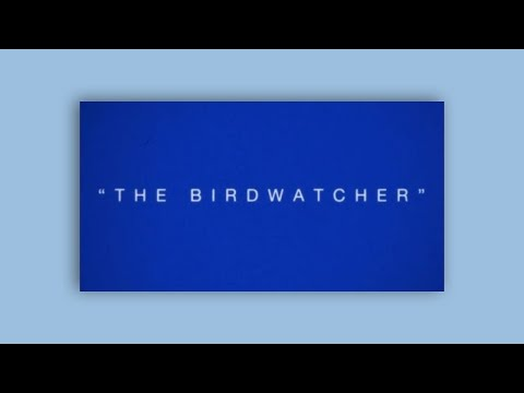 VULFPECK /// The Birdwatcher