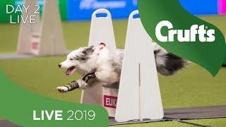 day-2-live-crufts-2019