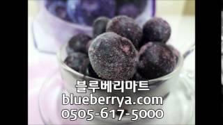 ■냉동블루베리, 블루베리진액파는곳■