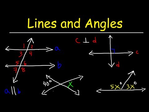 Parallel and Perpendicular Lines, Transversals, Alternate Interior Angles, Alternate Exterior Angles
