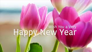 Happy New Year 2018 Flower Pics