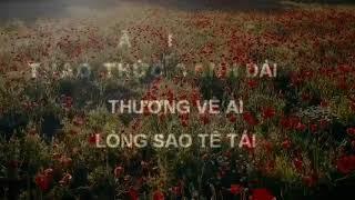 Tình Phiêu Lãng - karaoke - Việt Quang