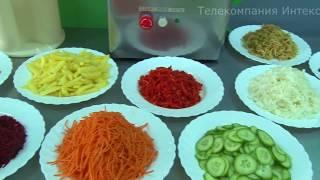 Машина для переработки овощей МПО-1