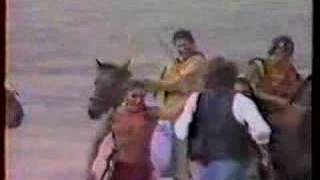 Cody the Buffalo, set of Dances with Wolves - BuffaloGal.com