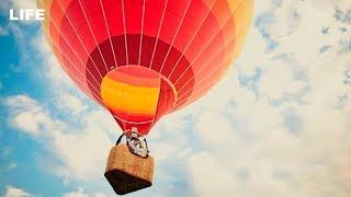 Сыграли свадьбу на воздушном шаре