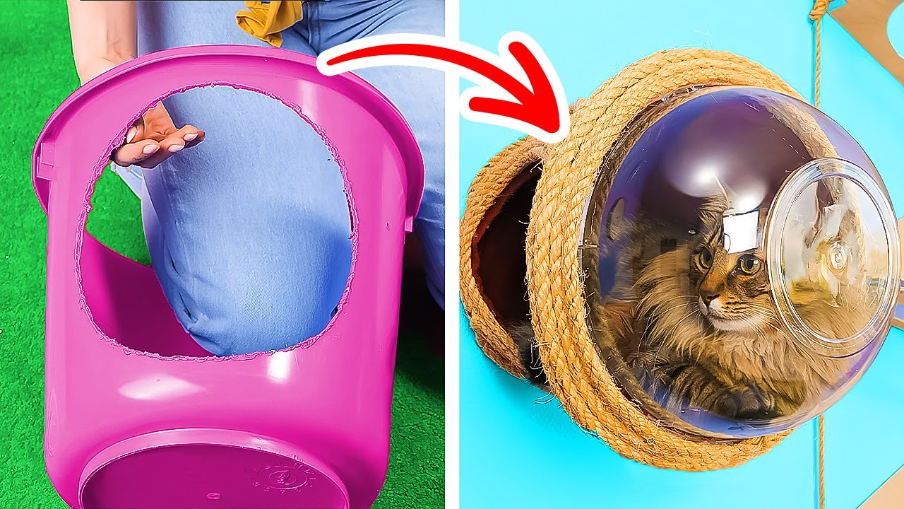 Amazing And Funny Hacks For Cat Lovers