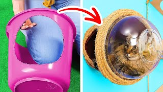 CUTE DIY CAT HOUSE || Heart-Warming Pet Crafts, Gadgets And Hacks For Loved Ones