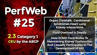 PerfWeb 25 – Renal Function, AKI, and Fluid Balance for the perfusionist - 2.0 Part 2