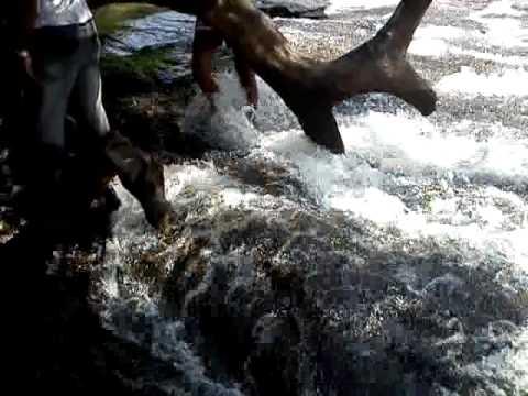 Athirappalli Falls - Chalakudy river