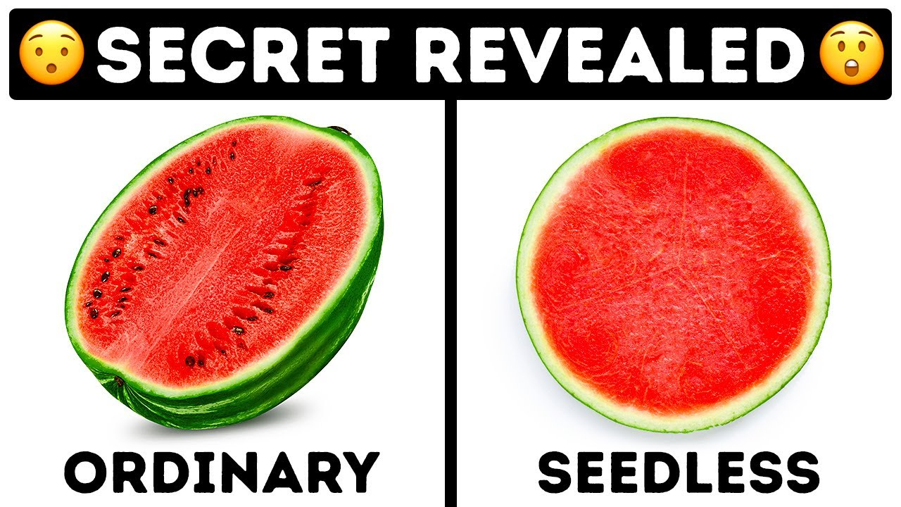 How Seedless Fruits Grow and 25 Daily Mysteries