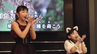 あゆちゃん(右側)が歌うので、サポートとして、ななみちゃん(左側)が一緒に歌っているようですね ※自粛前動画です(最近のではなく、すみません) #ProductionDelight ...