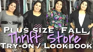 Plus Size Fall Thrift Store Try-On/Lookbook